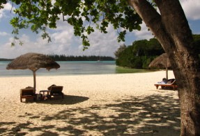 Tropical island resort scene, Ile des Pins