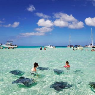 Swimming with rays, Grand Cayman
